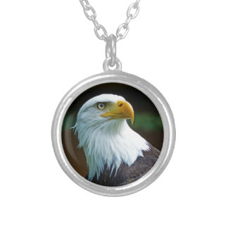 Bald Eagle Head 001 02.1 rd Silver Plated Necklace