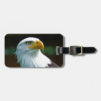 Bald Eagle Head Luggage Tag