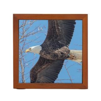 Bald Eagle in flight Desk Organisers