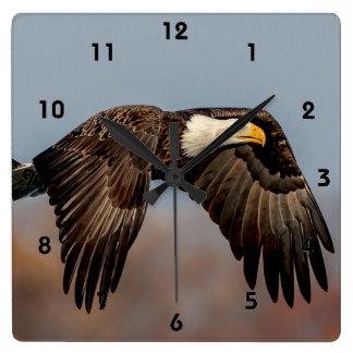 Bald Eagle in flight Square Wall Clock