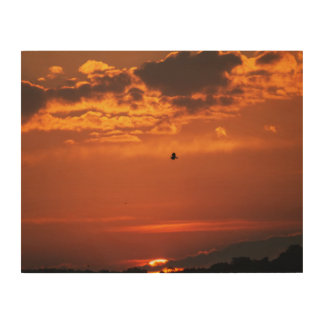 Bald Eagle In the Sunset Wood Wall Art