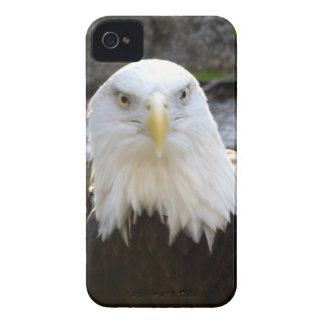 BALD EAGLE iPhone 4 COVER