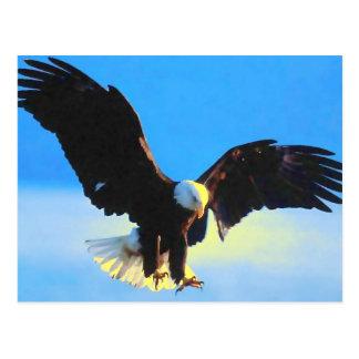 Bald Eagle Landing Postcard