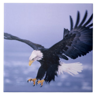 Bald Eagle Landing Wings Spread in a Storm, Ceramic Tile