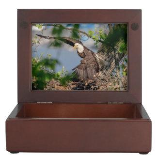 Bald Eagle leaving the nest Keepsake Box