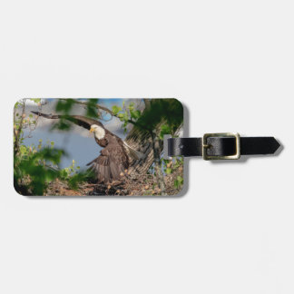 Bald Eagle leaving the nest Luggage Tag
