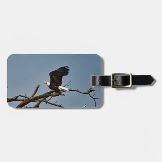 Bald Eagle Lift Off Luggage Tag