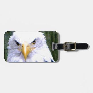 Bald Eagle Luggage Tag
