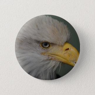 Bald Eagle of Alaska U.S.A. 6 Cm Round Badge