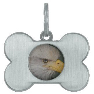 Bald Eagle of Alaska U.S.A. Pet Tag