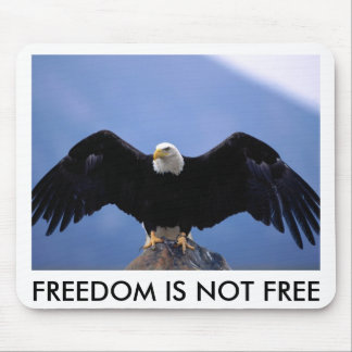 BALD EAGLE ON ROCK, FREEDOM IS NOT FREE MOUSE PAD