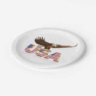Bald eagle on the flag paper plate