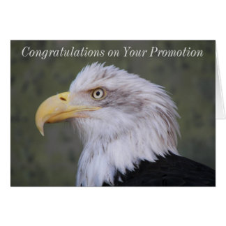 Bald Eagle Photo Promotion Congratulations Card