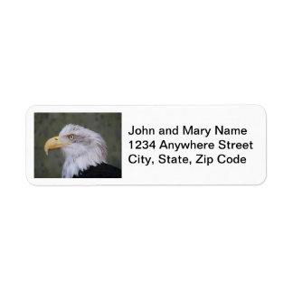 Bald Eagle Photo Return Address Labels