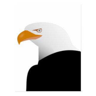 Bald Eagle Profile Postcard