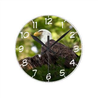 Bald Eagle Rest Stop Round Clock