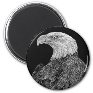 Bald Eagle Scratchboard Magnet