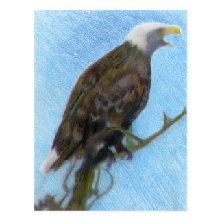 Bald Eagle Screaming in a Tree Postcard