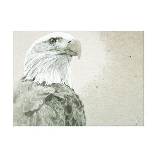 Bald Eagle Stretched Canvas Print