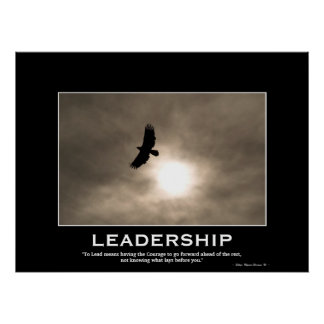 Bald Eagle & Sun LEADERSHIP Motivational Poster