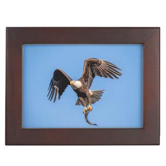 Bald Eagle with a fish Keepsake Box