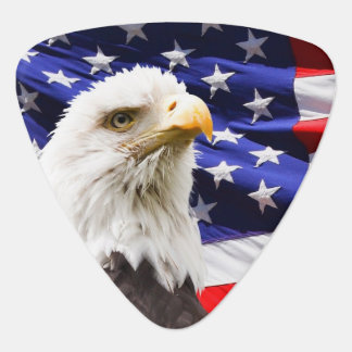 Bald Eagle with American Flag Background Plectrum