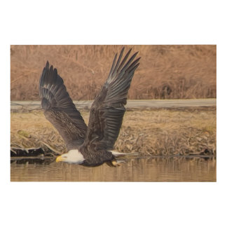 Bald Eagle With Fish Wood Canvas