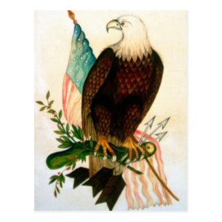 Bald eagle with flag postcard