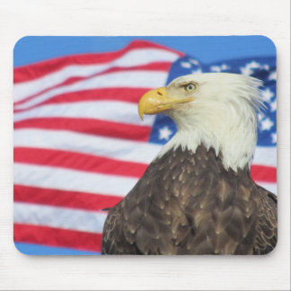 Bald Eagle with Stars and Stripes Mouse Pad