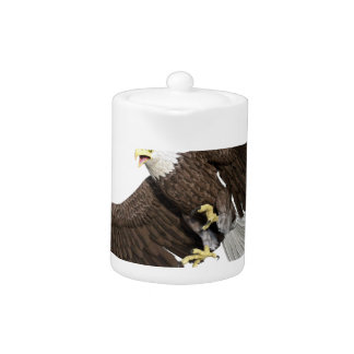 Bald Eagle with wings on down stroke