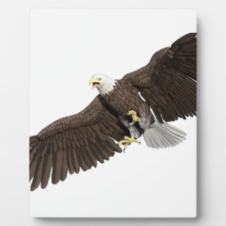 Bald Eagle with wings on down stroke Plaque