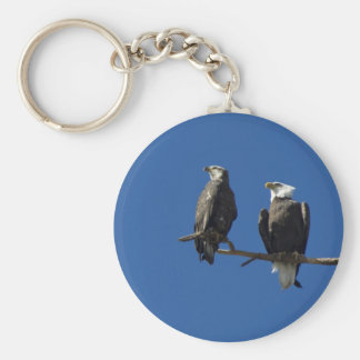 Bald Eagles Key Ring