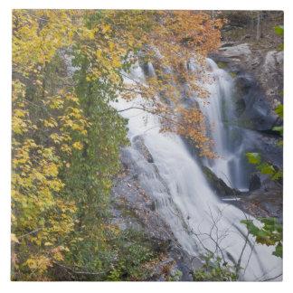 Bald River Falls Large Square Tile