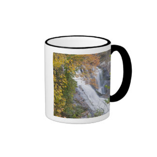 Bald River Falls Ringer Mug