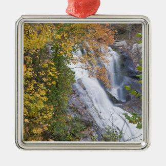 Bald River Falls Silver-Colored Square Decoration
