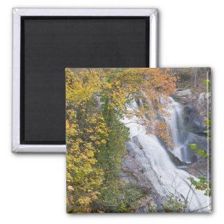 Bald River Falls Square Magnet