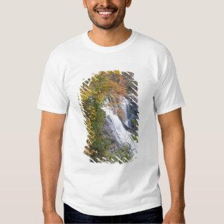 Bald River Falls Tee Shirt