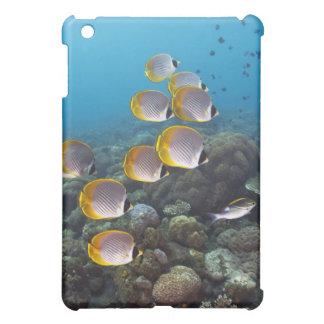 Bali, Indonesia iPad Mini Cases