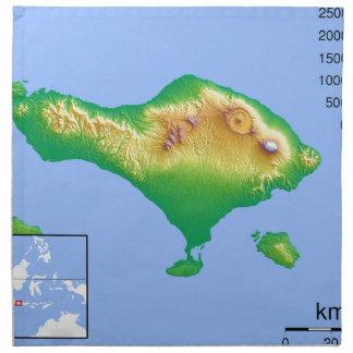 Bali Map Napkin
