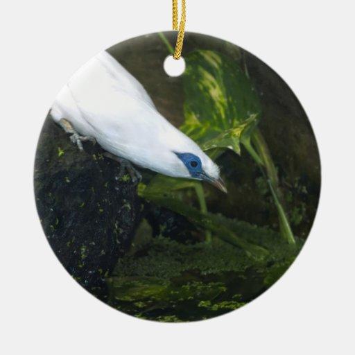 Bali Myna Christmas Ornament