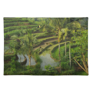 Bali - Young terrace ricefields and palms Placemat
