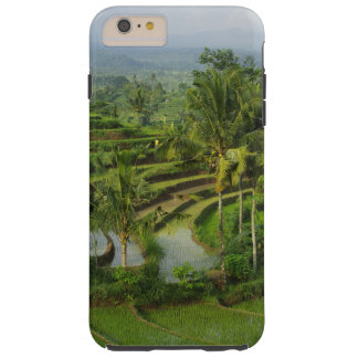 Bali - Young terrace ricefields and palms Tough iPhone 6 Plus Case