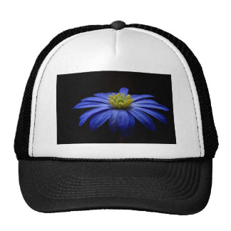 Balkan Anemone Flower Blue Trucker Hat