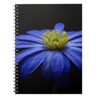 Balkan Anemone Flower Blue Notebook