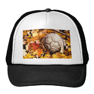 ball in the woods hat