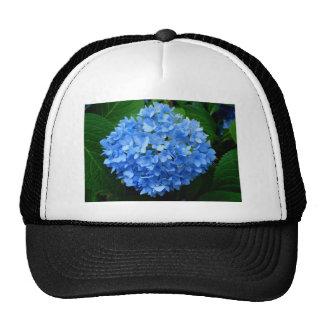 Ball of Blue Cap