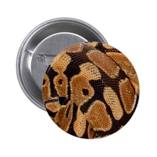 Ball Python Button Badge