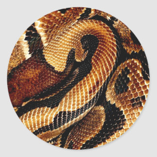 Ball Python Classic Round Sticker