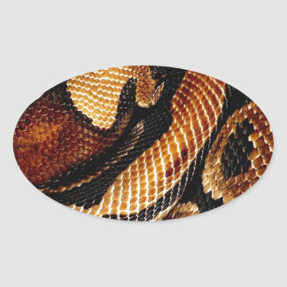 Ball Python Oval Sticker