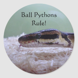 Ball Pythons Rule! Classic Round Sticker